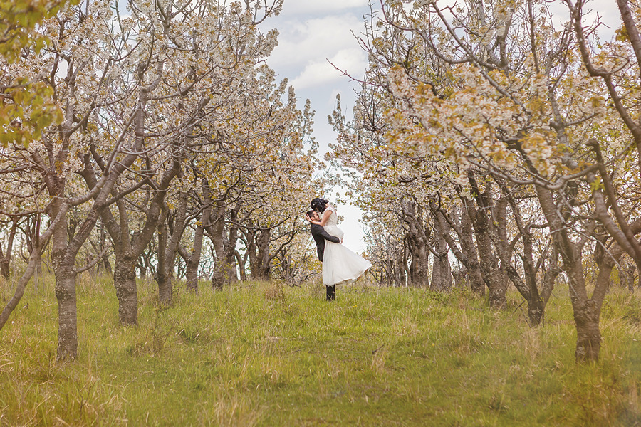 FOTOVIVA Fotografii după nuntă  Dumbrăvești